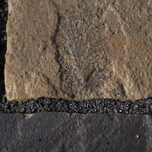 Dark sandsten brosten