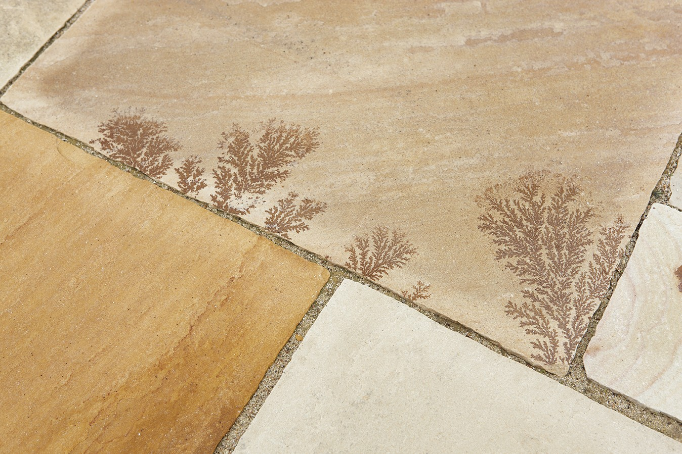 Sahara sandsten